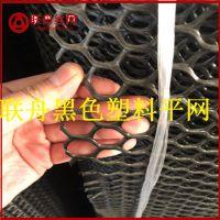【联舟】厂家供货黑色塑料平网 养鸭脚踩网
