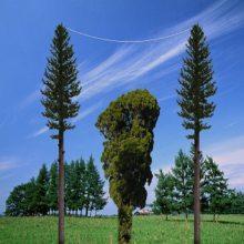厂家直销通信仿生树玻璃钢仿生树
