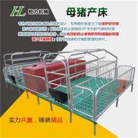 供应大中型养猪场母猪专用设备欧式双体母猪产床