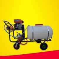 亚博国际真实吗机械 方便行走式手推打药车 自走式汽油打药机 拉管式打药机 手推式果园喷药机