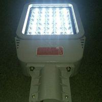 BLED98免维护防爆路灯头/LED80W防腐防水泛光照明