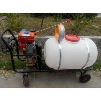 科圣 汽油高压喷雾器稻麦亚博正式官网 手推式汽油喷雾机价格 哪里有卖