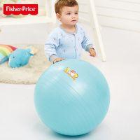 费雪***授权 30英寸55CM直径孕妇建身瑜伽球特价批发大众型