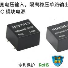 WRB_ST/SD-3WR2 系列 DC/DC 模块电源 金升阳 MORNSUN
