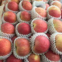 烟台红富士苹果批发 高端礼盒定制 专业进出口公司 出口品质