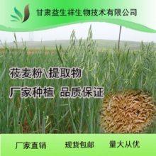 莜麦提取物 莜麦膳食纤维 莜麦多肽 莜麦提取液 莜麦生粉