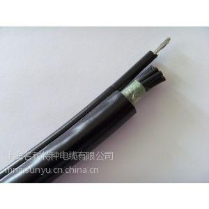 单钢丝电动葫芦电缆(RVV1G)