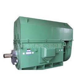 供应Y、YR、YKS、YRKS系列高压电机西玛电机