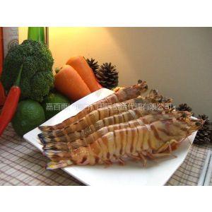 供应进口清关雪蛤龙虾---厦门、泉州、漳州、福州