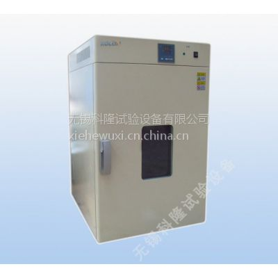 供应干燥箱型号KLTH100 电热恒温鼓风干燥箱 无锡恒温干燥箱 厂家直销 价格优惠 服务领先