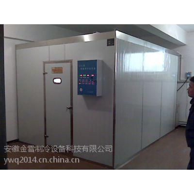 供应山东果蔬组合冷库设备有哪些