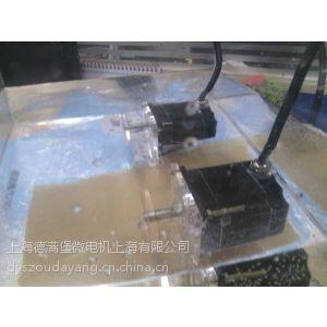 供应德满堡IP68防水步进电机