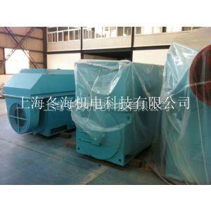 6KV高压永磁电机TYX6301-12-560KW