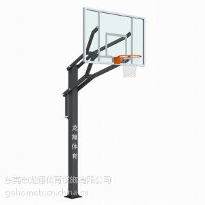 供应东莞弹力休闲篮球架LX-008