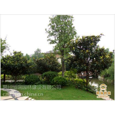 常州别墅庭院设计与施工 阳台花园设计与施工