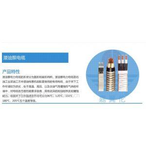 供应新疆潜油泵电缆厂家|新疆电力电缆|诚招新疆潜油泵电缆代理