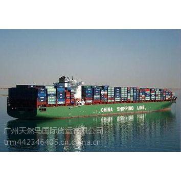 广州到意大利海运物流专线 意大利海运货代公司