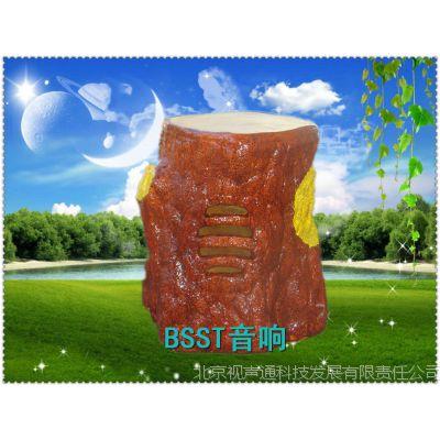 北京视声通草坪音箱CP-207D