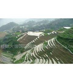 桂林旅游路线 桂林旅游景点大全