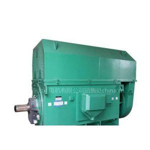 供应大连电机厂YLKK系列高压电机