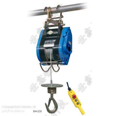 德国进口BW型电动钢丝绳葫芦