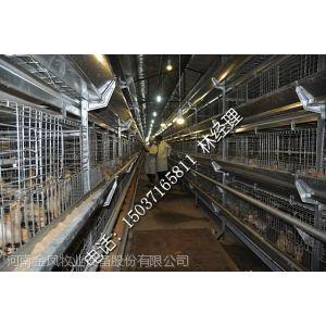 厂价热销小鸡笼 一日龄小鸡笼 不跑鸡 质量好 层叠式育雏鸡笼
