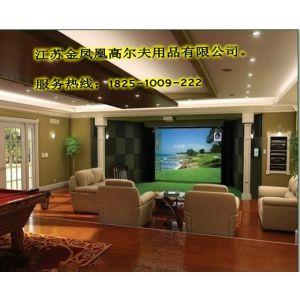 供应模拟高尔夫、迷你高尔夫、挥杆网果岭