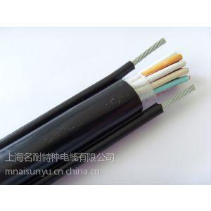 双钢丝电动葫芦电缆(RVV2G)