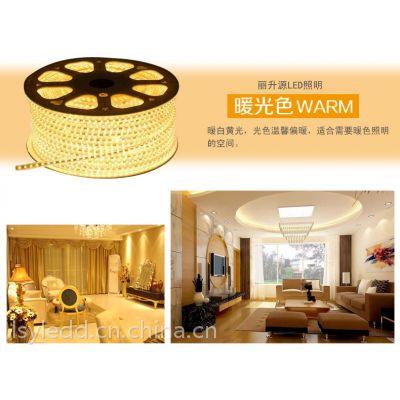 丽升源厂家热卖LED灯带5050 3528装饰防水彩灯带