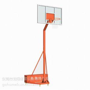 供应深圳篮球架厂家批发 学校幼儿园专用龙儿童篮球架LX-010