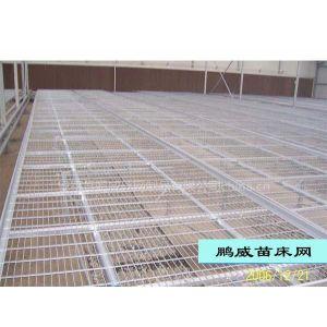 供应热镀锌苗床网温室苗床网片