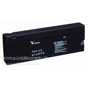 供应批量出售飞利浦监护仪电池 2.3AH铅酸蓄电瓶