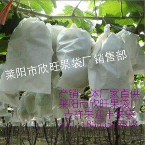 供应供应葡萄袋子,水晶葡萄袋,果袋,专用葡萄套袋,18353518818