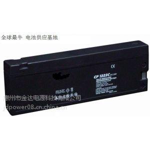 供应惠州批量出售迈瑞监护仪2.3AH铅酸电池