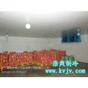 供应水果蔬菜保鲜冷库冷藏冷冻库设计安装、成都专业冷库工程公司