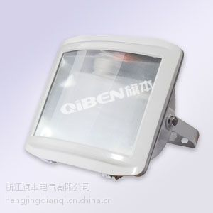 GTZM8100C消防应急照明灯,三防应急照明灯具