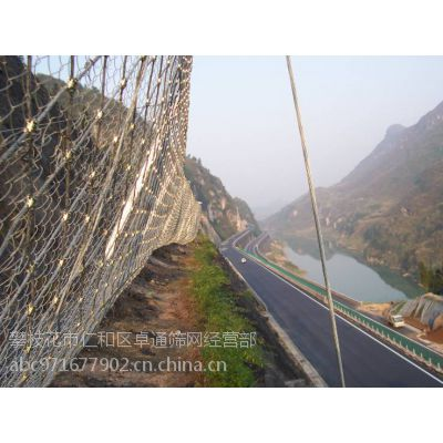 四川攀枝花加工定做SNS环形钢丝绳边坡防护网,质优价廉! 13982359302