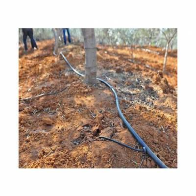 丘陵果园滴灌工程安装 果园滴灌工程施工 果园滴灌工程布置图