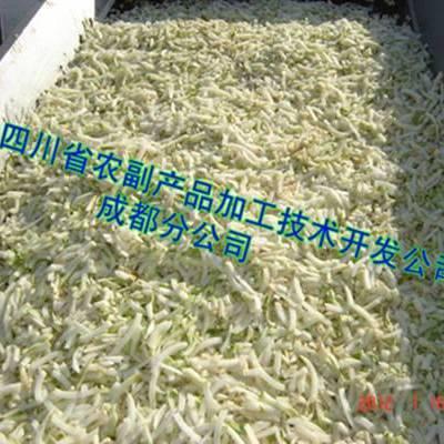 萝卜干烘干机(木山4型),綦江萝卜干烘干机,毕节萝卜干烘干机
