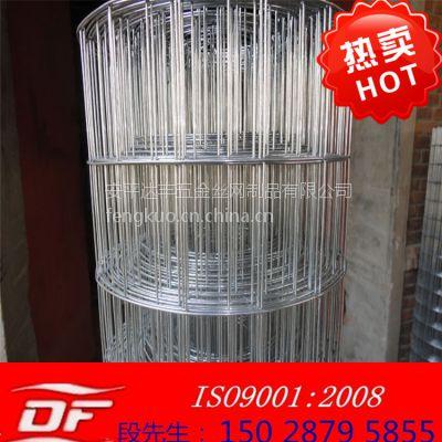 厂家现货直销电焊网 浸塑电焊网 不锈钢焊接网