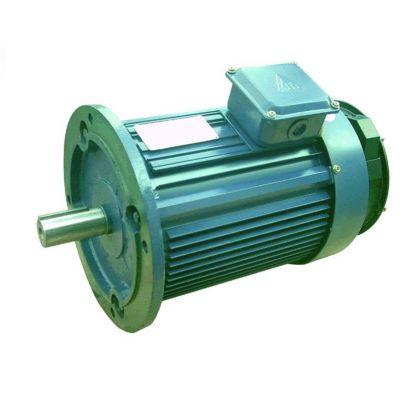 供应三相异步电动机,防爆电机,山东塔机配件