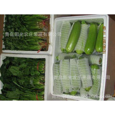 有做鲜蔬菜出口的公司吗?青岛阳光农庄果蔬有限公司13356879528