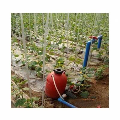 蔬菜大棚膜下滴灌施肥技术每亩造价