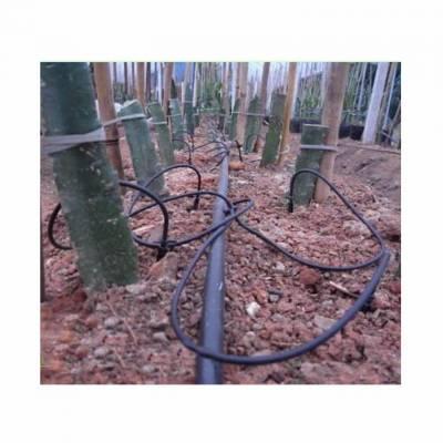 火龙果滴灌专用滴灌pe管 滴灌毛管 滴灌16灌溉管