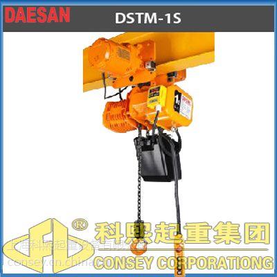 供应DST带超载保护环链电动葫芦 韩国DAESAN带超载电动葫芦价格