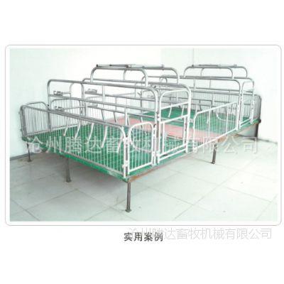 新型养猪设备 母猪产床 自动养猪设备 全自动养猪设备厂 分娩产床