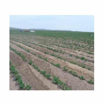 大田土豆地滴灌设备 滴灌管件 滴灌材料批发价格