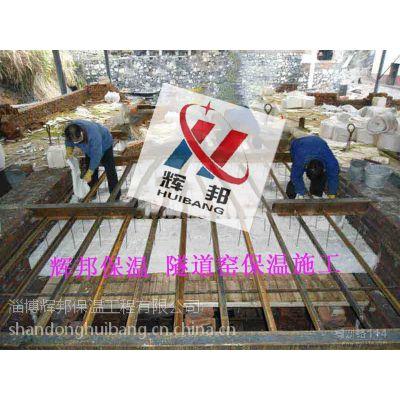 供应湖北移动式隧道窑保温模块 陶瓷纤维毯 锚固件