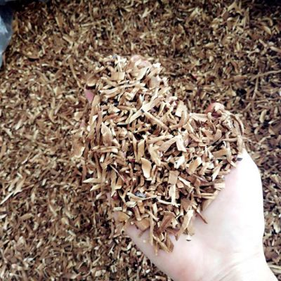 康瑞灵芝长白山灵芝孢子粉规格 300目超细粉厂家
