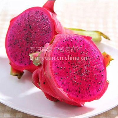 南方特产夏季新鲜水果 红心红肉火龙果 5斤装 肉红汁多